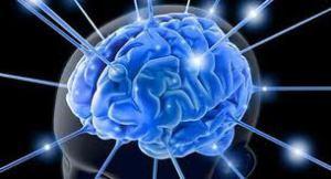 Neuroliderazgo. El desafío del líder actual
